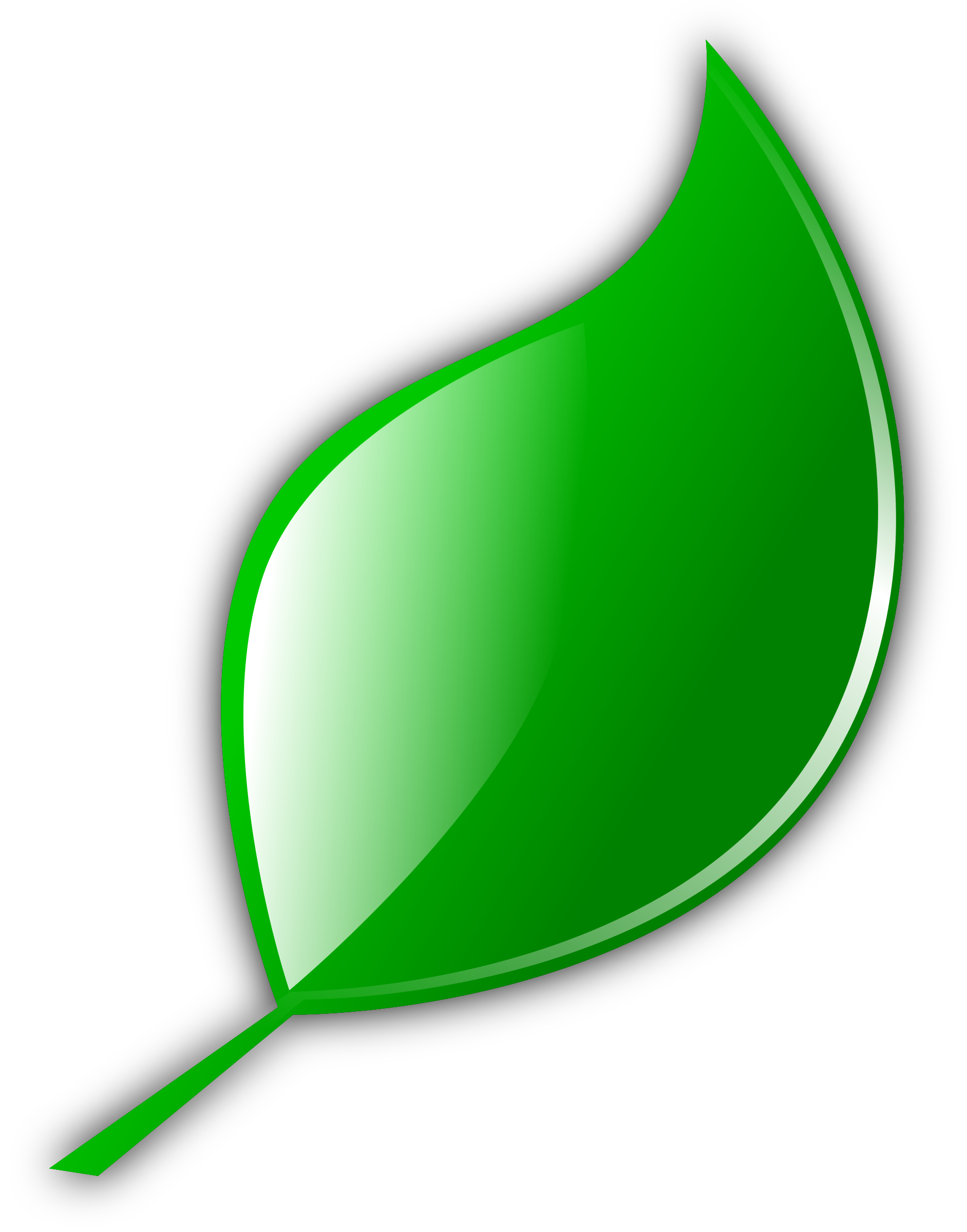 Cartoon leaf png. Leave icon free icons
