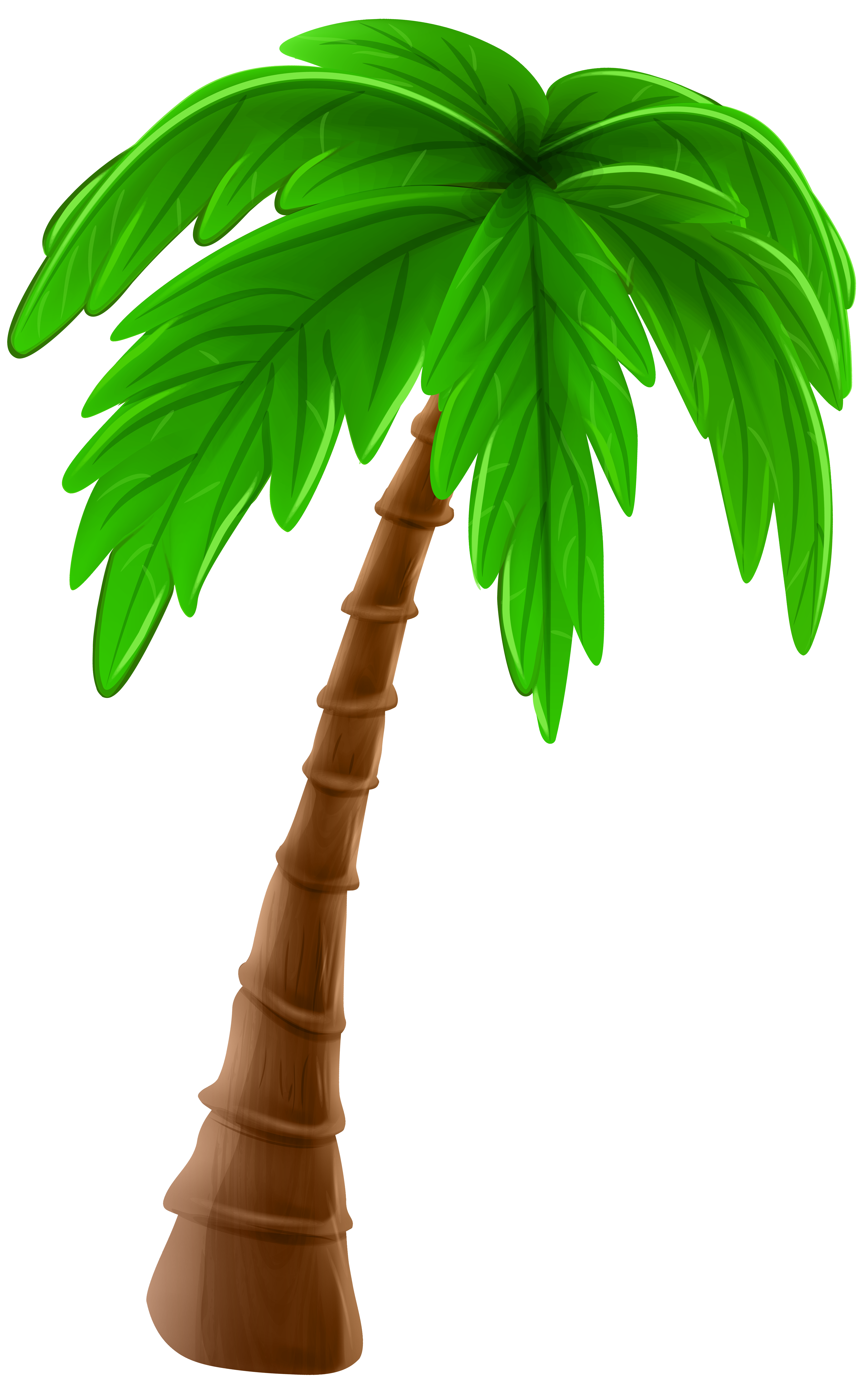 Palm clip art image. Tree cartoon png png royalty free