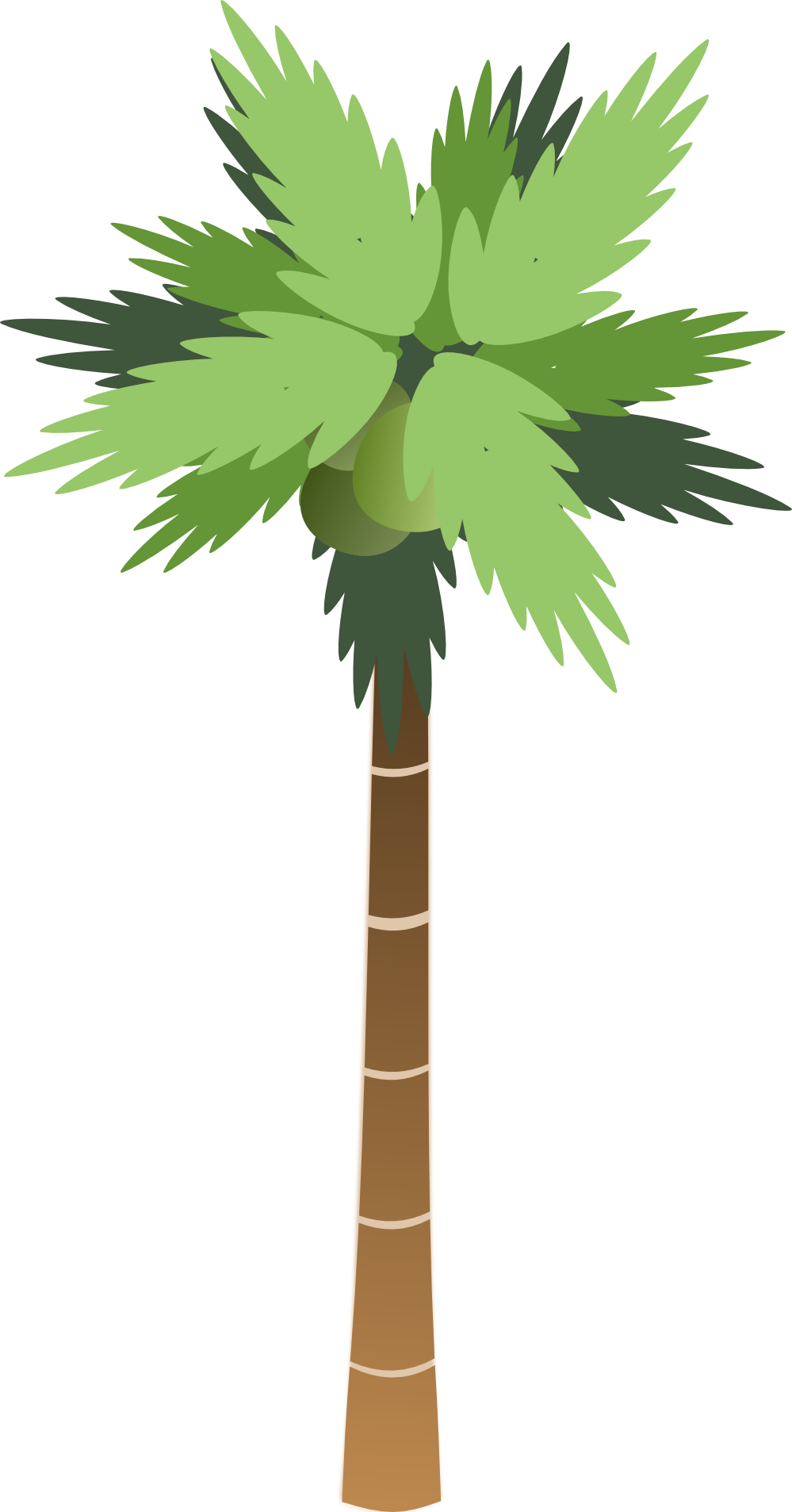 Cartoon palm tree png. Image