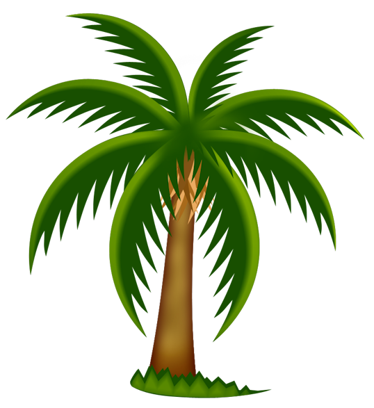 Cartoon palm trees png. Painted tree clipart gallery