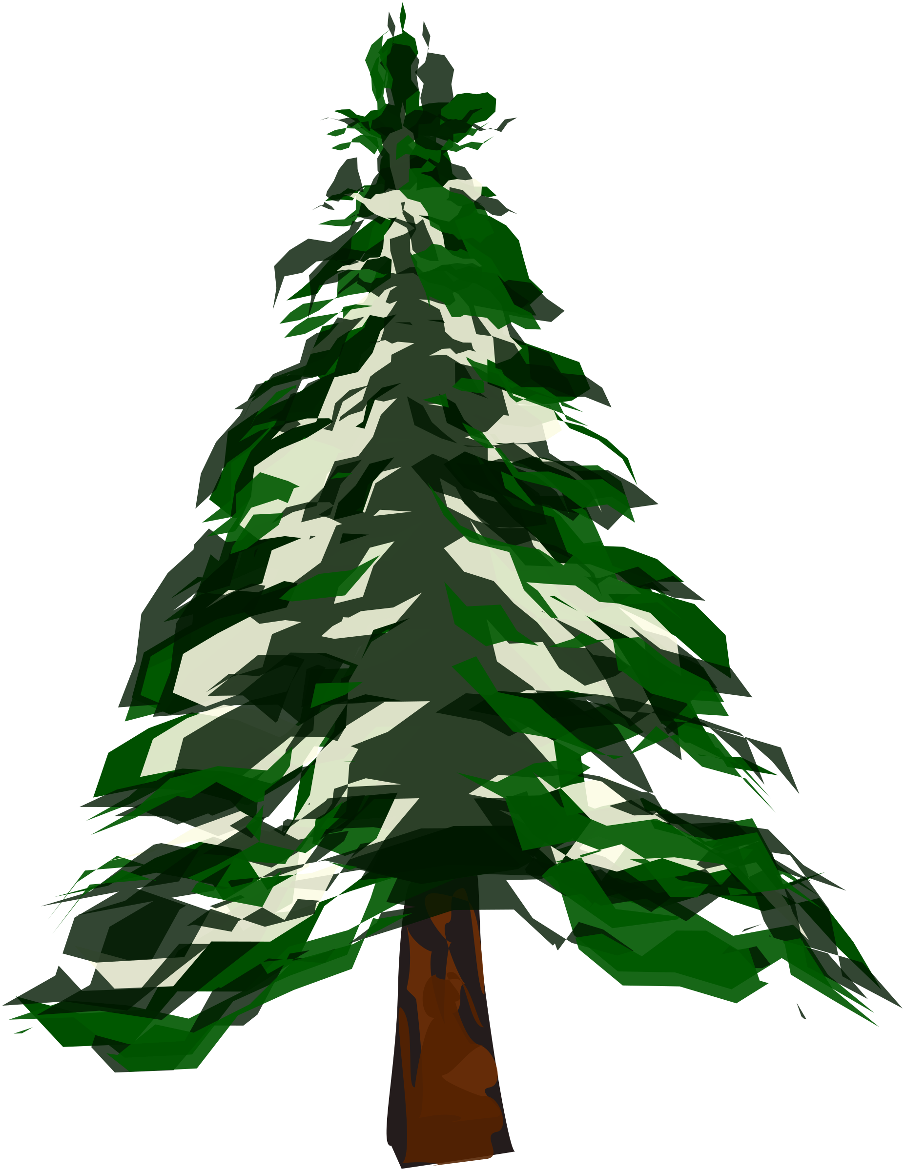 Cartoon pine tree png. Winter icons free and