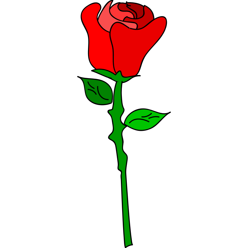 Cartoon rose png. Pictures free download clip