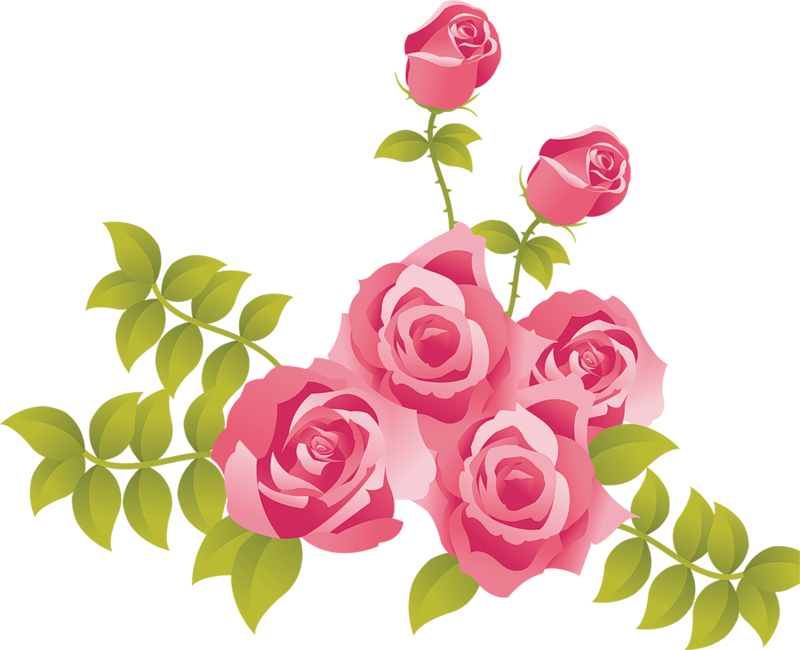 Cartoon rose png. Pink roses painted picture