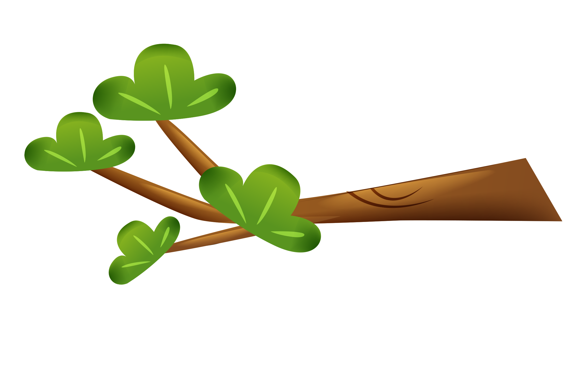 Cartoon tree branch png. Leaf animation branches green