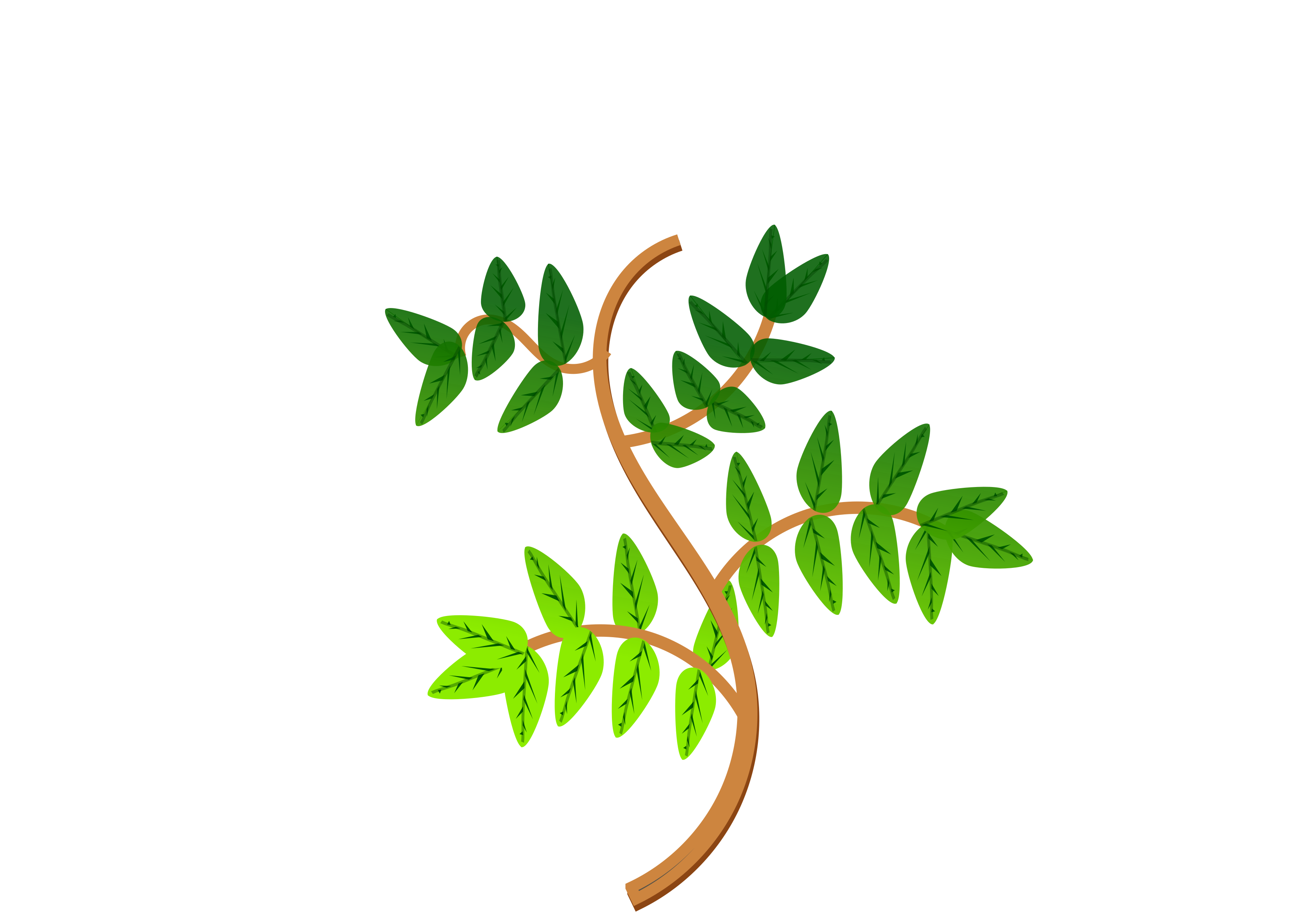 Cartoon tree branch png. Leaves and branches icons
