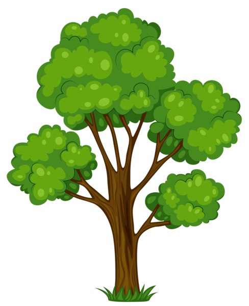 Cartoon trees png. Free tree download clip