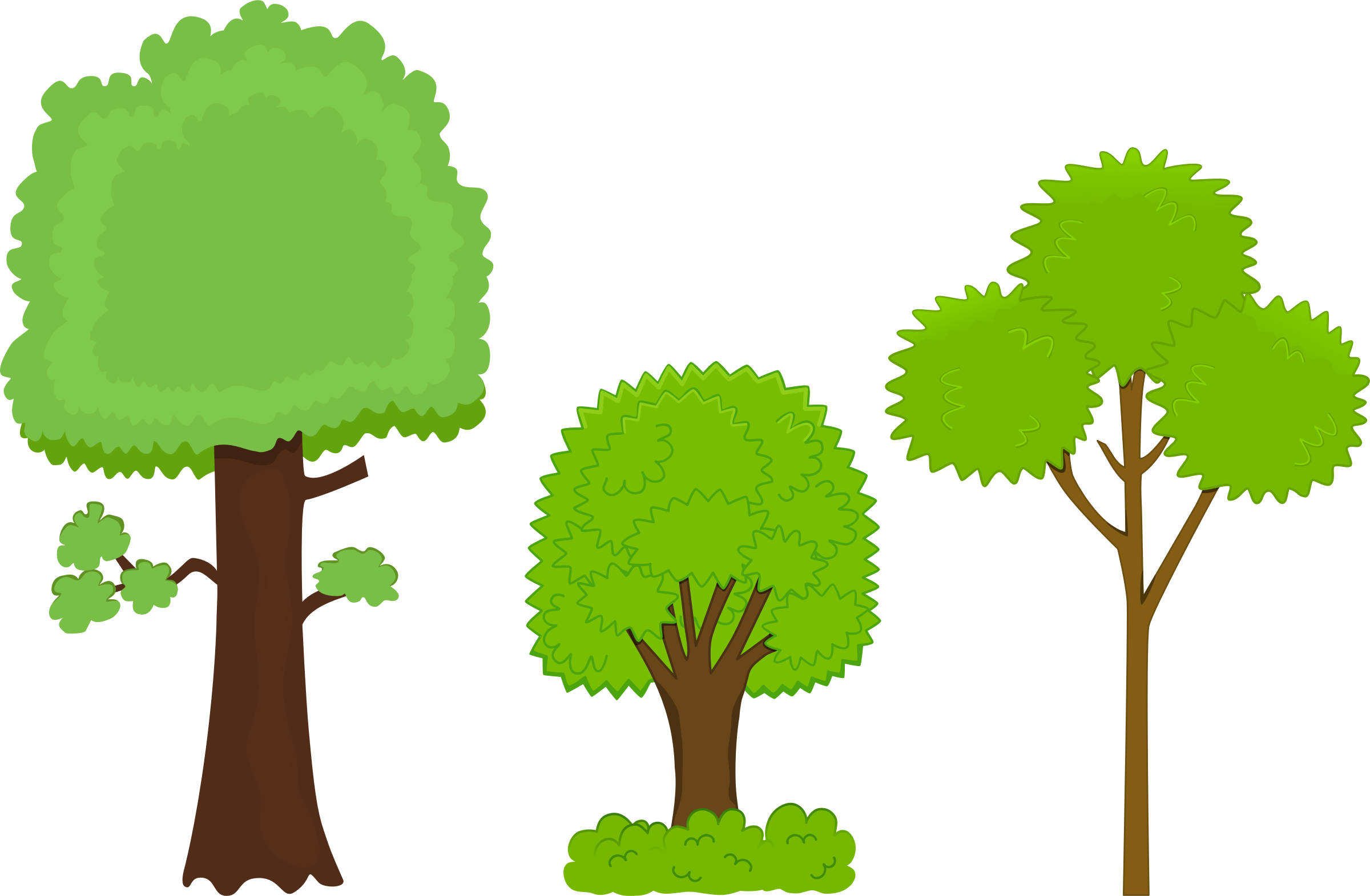 Environment vector pohon. Trees encode clipart to