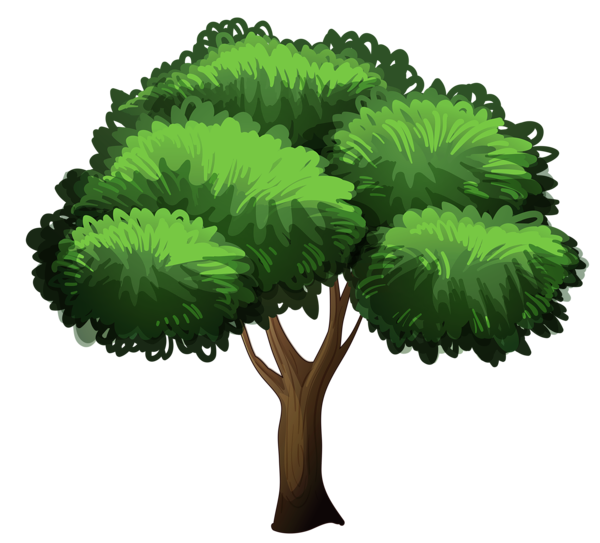 Cartoon trees png. Gallery clipart