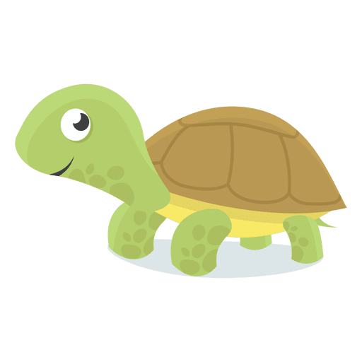 vector rabbit tortoise