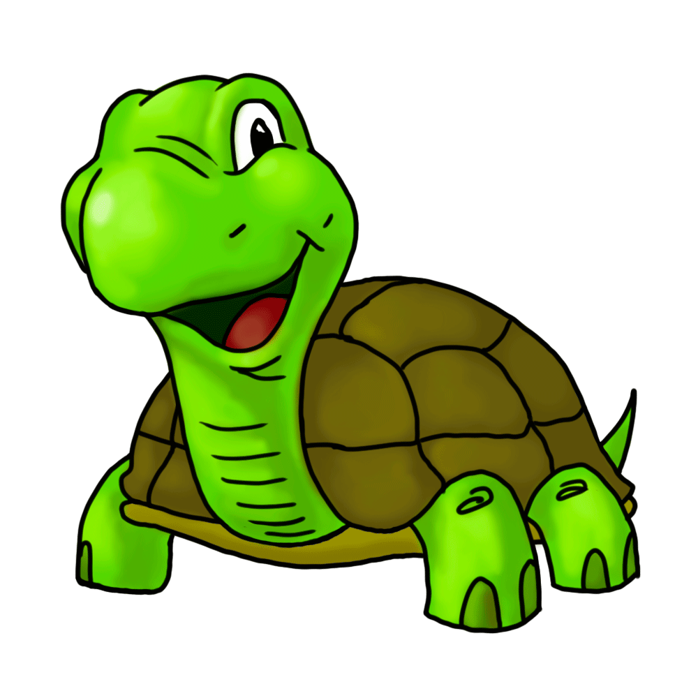 Cartoon turtle png. Collection of clipart