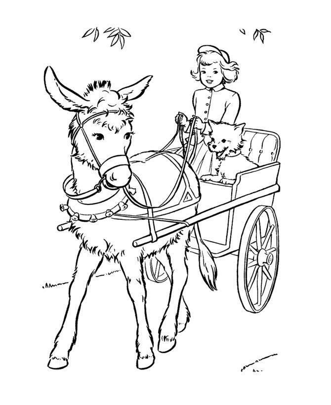 Carts clipart donkey cart. Best images on