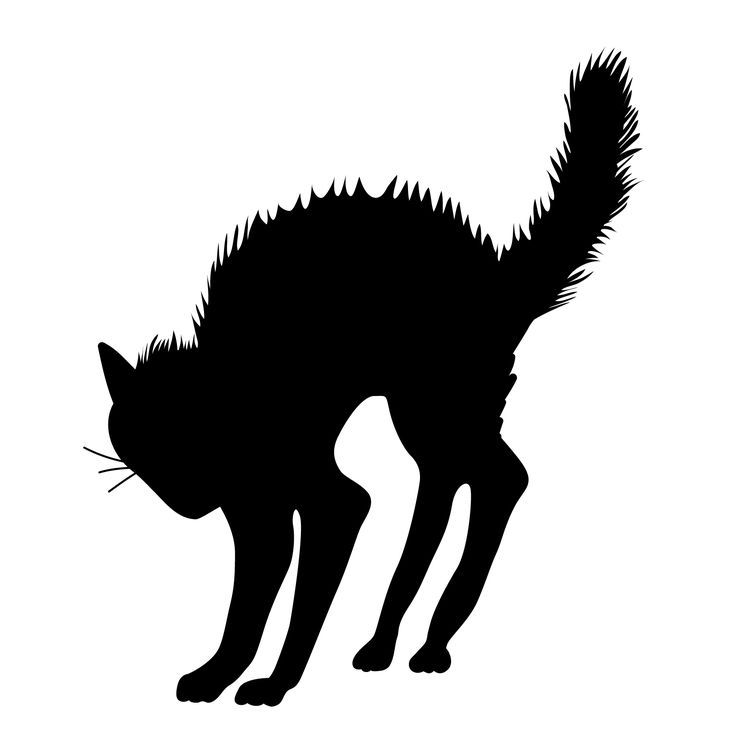 Cat clip art spooky black. Scary clipart halloween silhouette