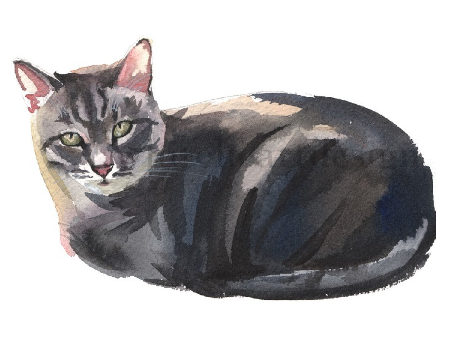 Grey clipart hand painted. Cat clip art tabby clipart library download