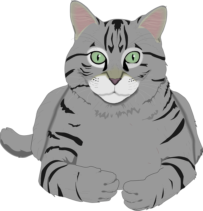 Free image on pixabay. Cat clip art tabby black and white library