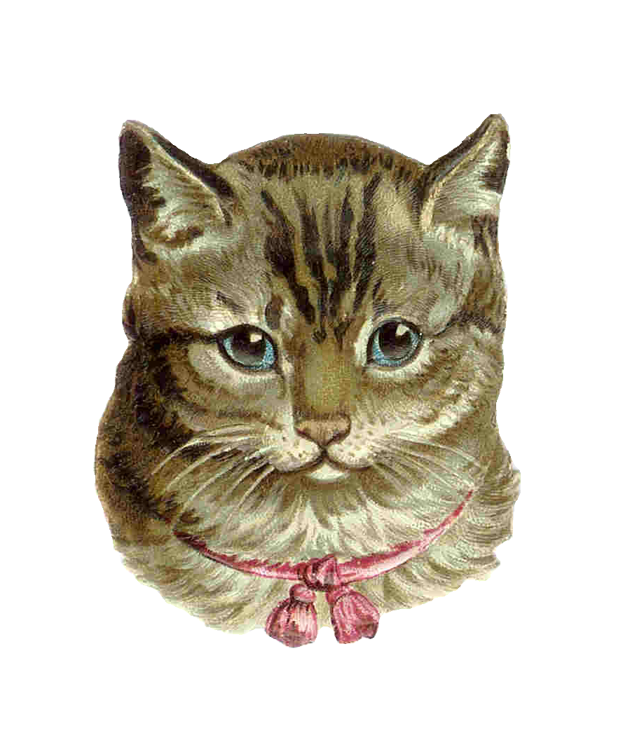 Antique images vintage victorian. Cat clip art tabby jpg library library