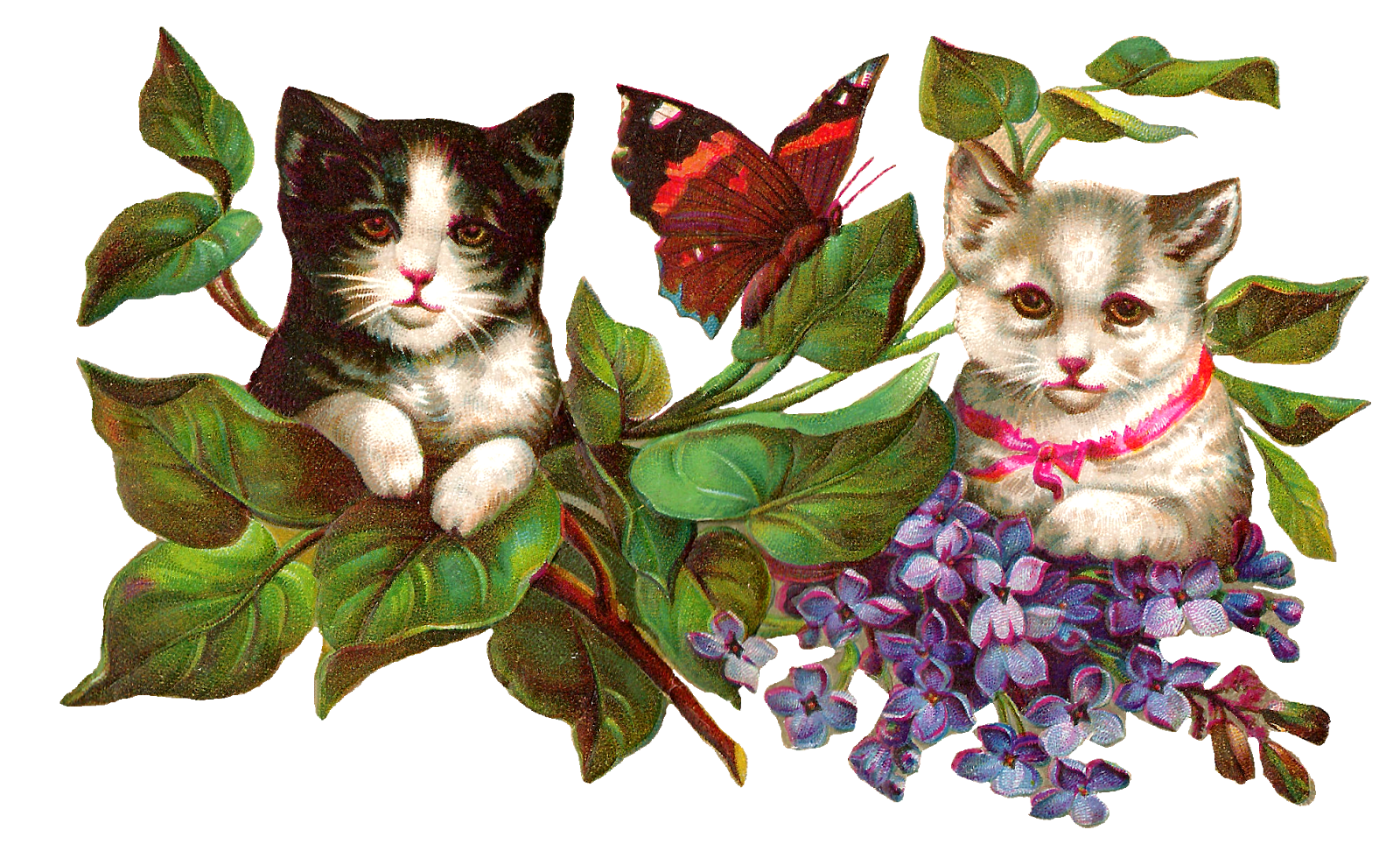 Cat clip art vintage. Antique images image wisteria