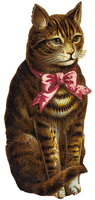 Cat clip art vintage. Google search and scrap