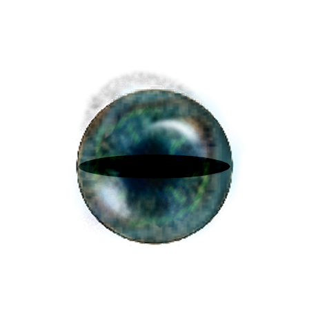 cat eye png