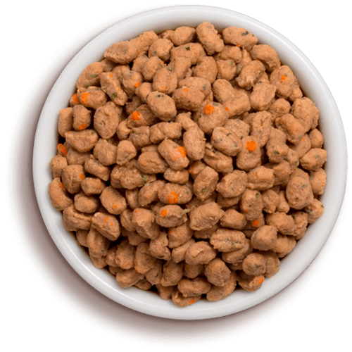 Cat food png. Freshpet healthy dog and