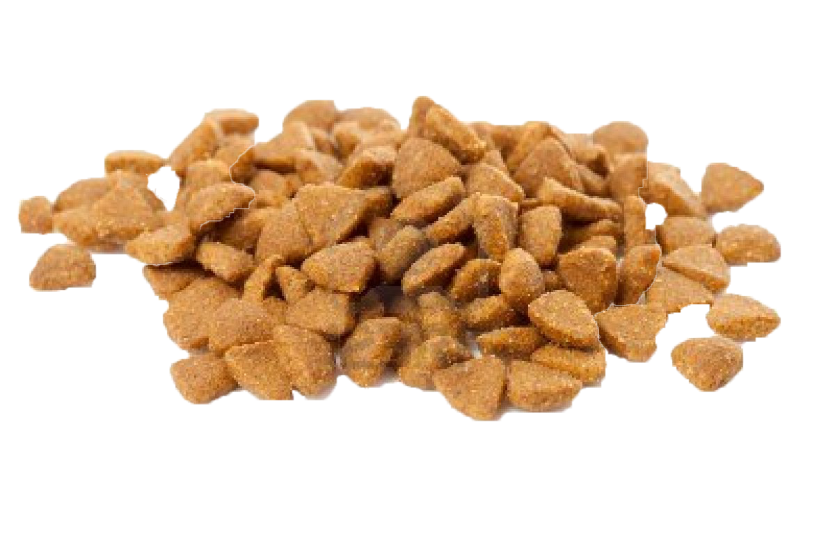 Cat food png. Birman fast chicken meat