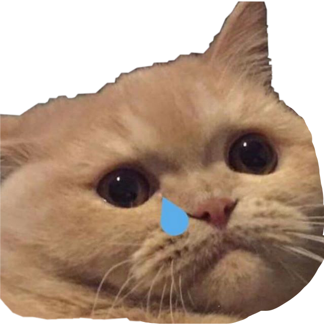 Crying cat png. Memes cry freetoedit sticker