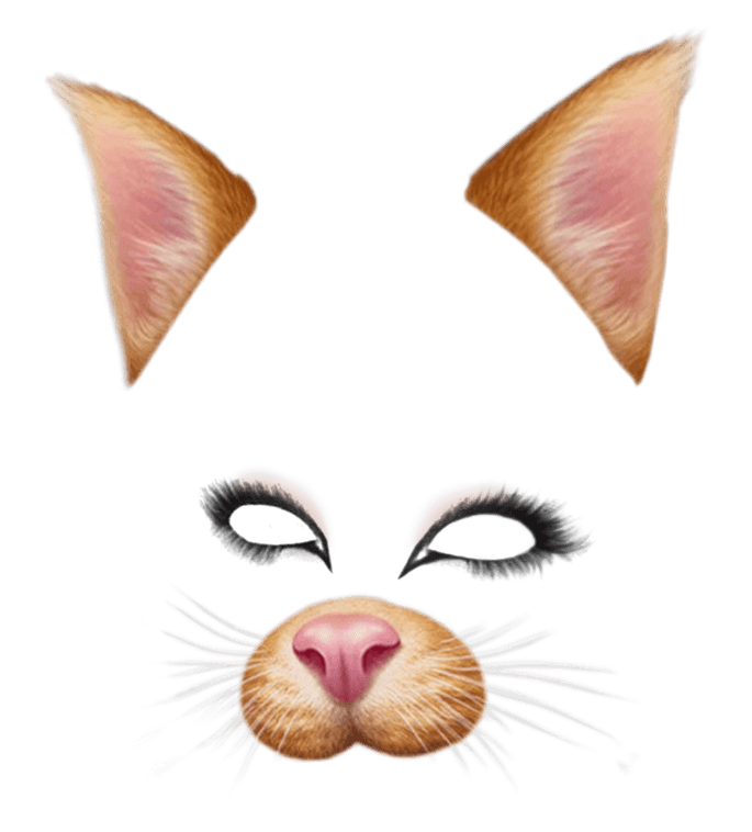 Brown cat transparent stickpng. Snapchat puppy filter png library