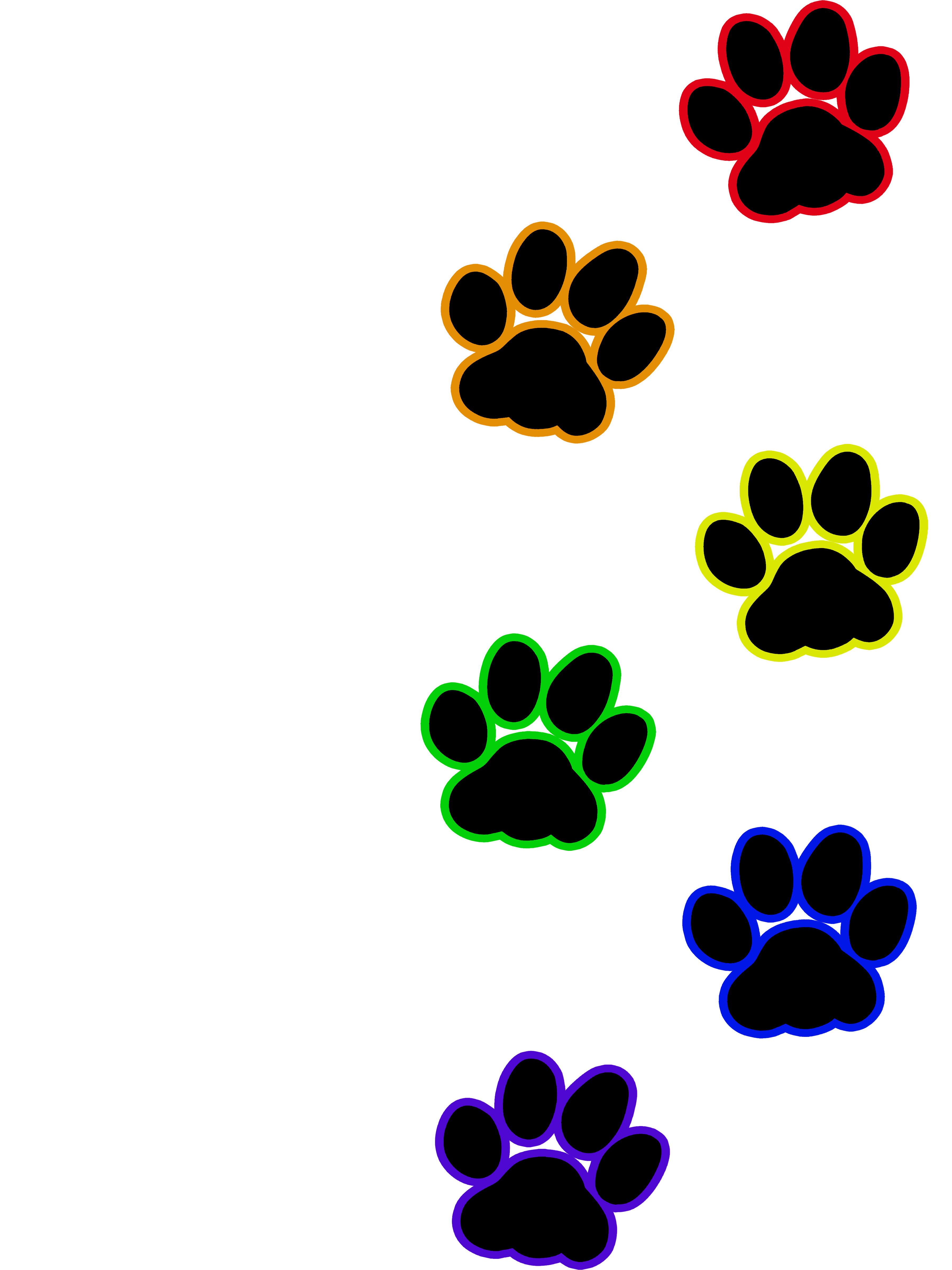 Kitty paw png. Cat print rainbow artworktee