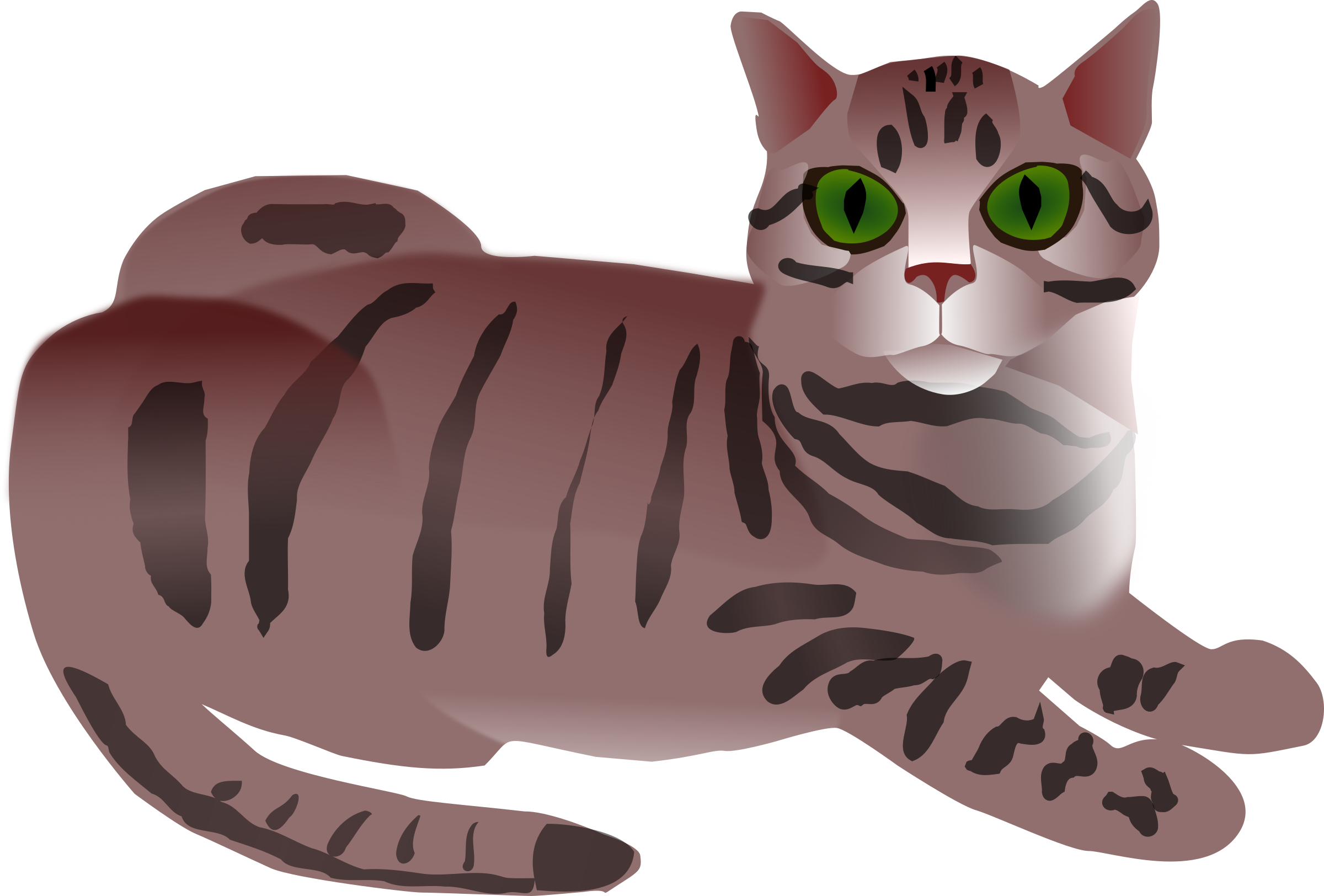 Cat stripes png. Clipart tabby big image