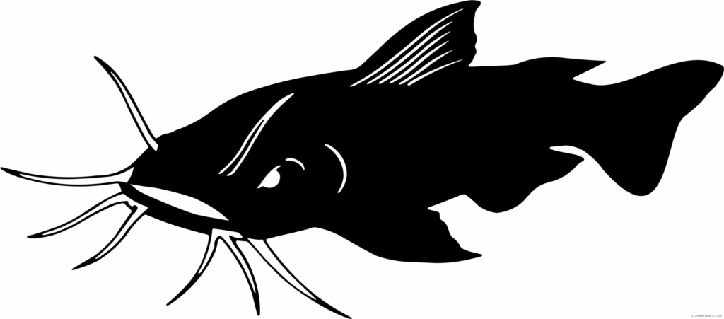 Catfish clipart black and white. Animal free images clipartblack