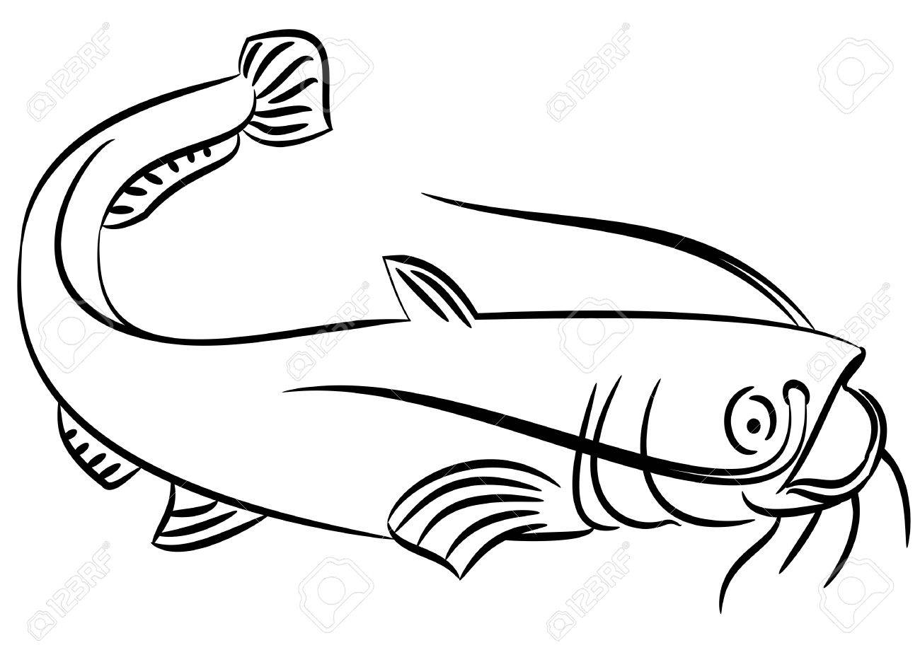 Catfish clipart channel nebraska. Drawing images at getdrawings