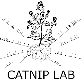 catnip drawing line