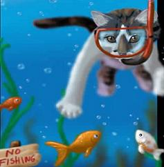 Cats clipart water. Free swimming tags in