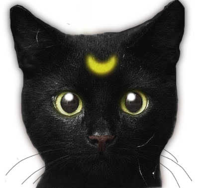 Cats png tumblr. Image the edited scary