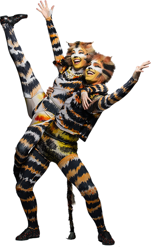 cats musical png