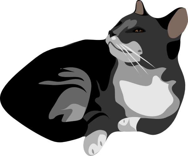 Cats vector png. Gatto cat clip art
