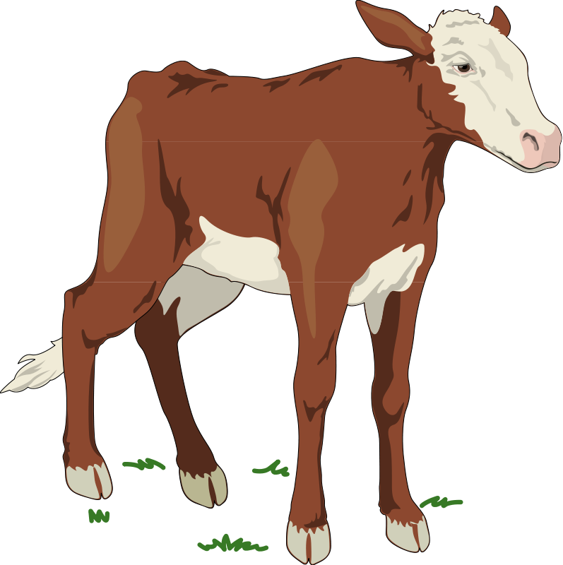 Cattle vector dairy cow. Free clip art library