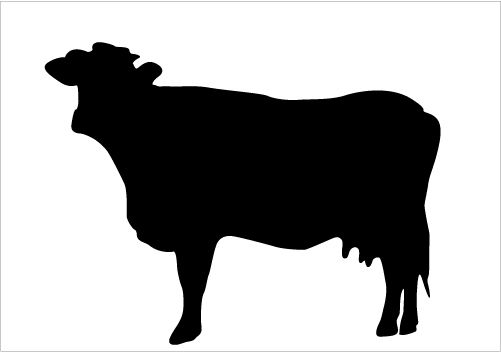 Cattle clipart cattle ranch. Best cow silhouettes for