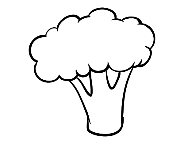 Broccoli clip art transprent. Cauliflower drawing coloring vector free