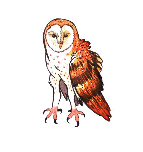 Celestial drawing owl. And snake tumblr other