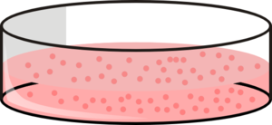 Cell clipart cell culture. Dish with cells clip