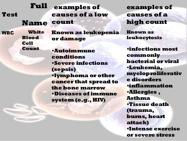 Cells clipart complete blood count. And its importance in