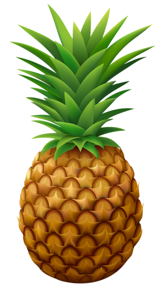 Chalk apple png. Pineapple vector clipart image