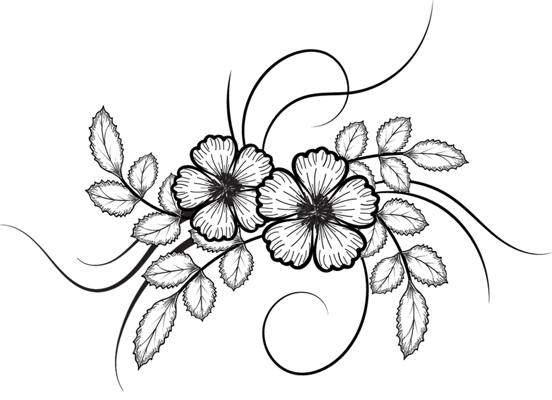 Chalk flower drawing png. Flowers illustrations file vectors