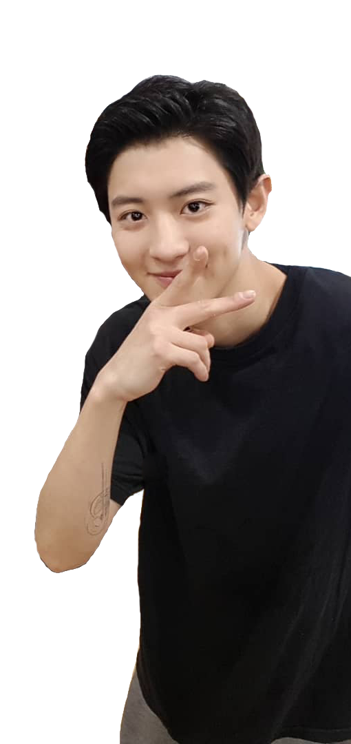 chanyeol transparent whole body