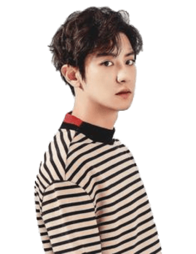 Chanyeol transparent costume. Exo png dlpng