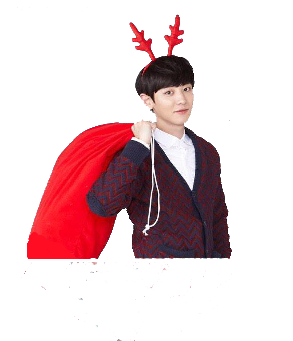 chanyeol transparent costume