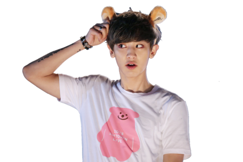 chanyeol transparent pink