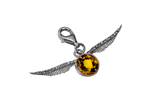 Charms clip watch. Harry potter jewellery l
