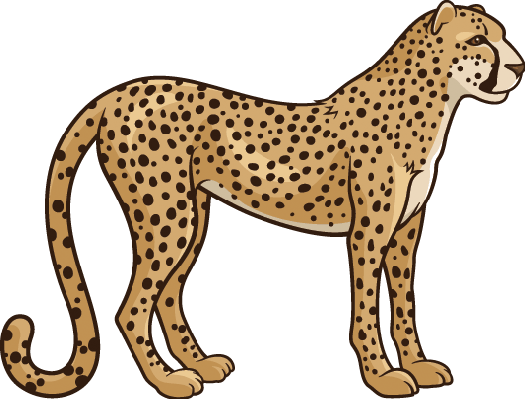 Cheetah clipart heart. The arts image pbs