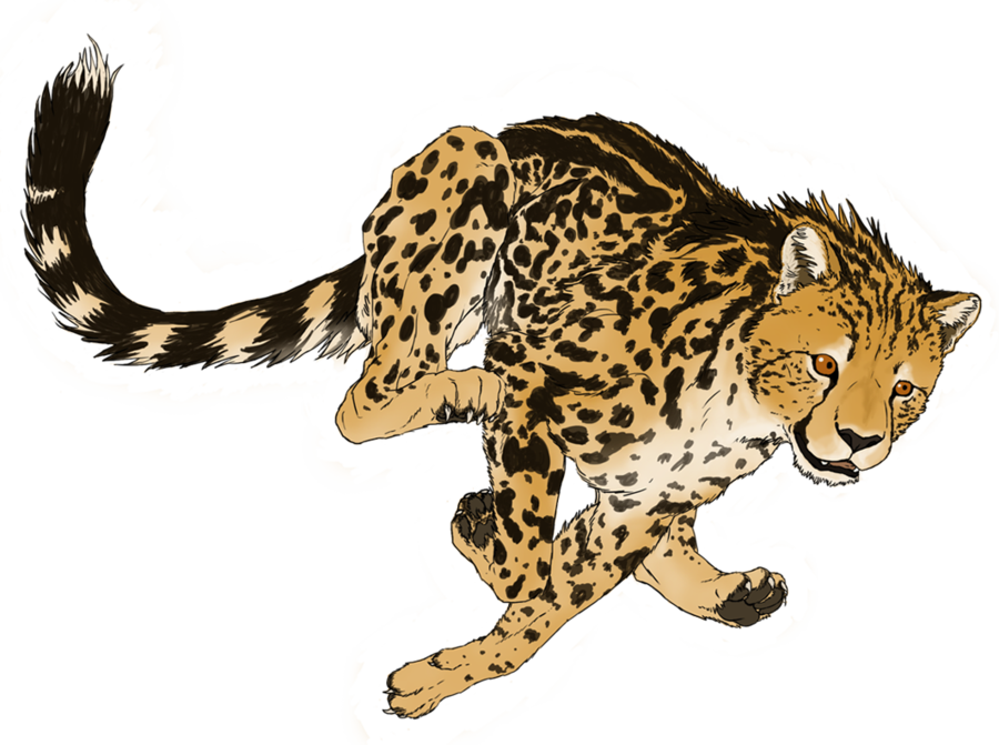 Drawing restrain cheetah. Image png transparent picture